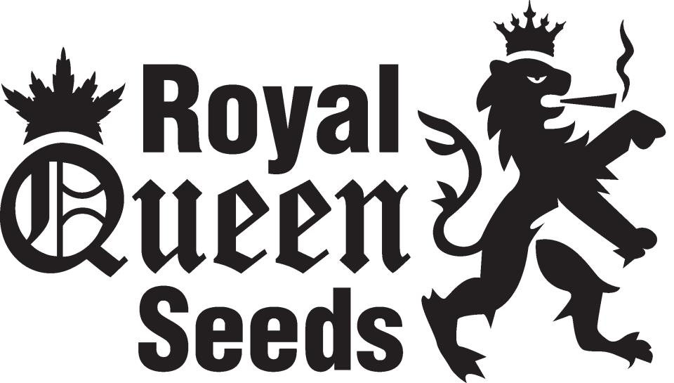 Afbeelding Royal Queen Seeds - Haarlemmerstraat - QuePasaNL